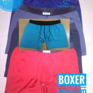 Boxer de Caballero